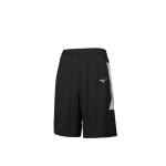 Mens Aerolite Shorts