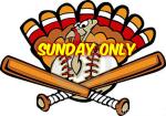 Thanksgiving Weekend Hitting Program - Sunday