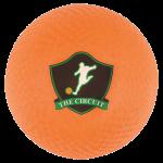 Official Kickball365 Tournament Balls (5) Five