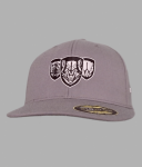 Predators Flex Fit Hat 2016