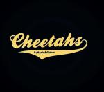 The Cheetahs logo