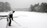 Too Cold To Golf logo