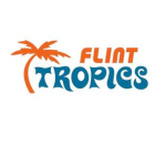 team home page for flint tropics roller hockey outdoor tues in