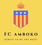 FC Amboko logo