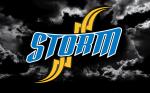 STORM D logo