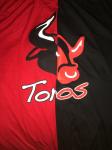 Toros C logo