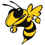 Stingers SC logo