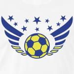 NE Arsenal logo