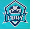 Stonhard Fury logo