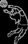 Setsy Back (Light Blue) logo